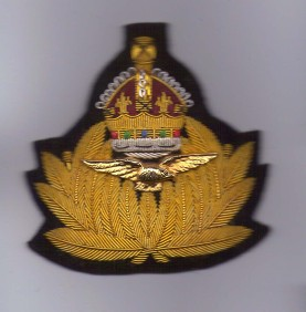 royal naval air service