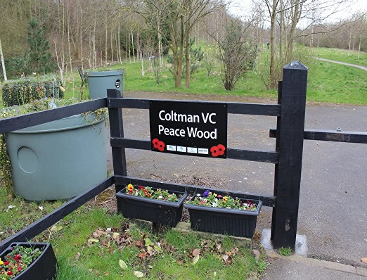coltman peace wood pl